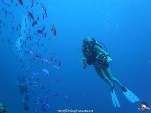 Diving in vanuatu